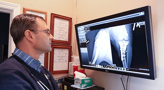 Diagnostics & Imaging